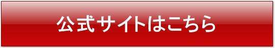 フルサポートneoの公式サイト